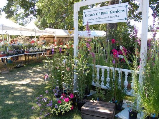 Friends of Bush Gardens will be selling unusual perennials, shrubs, trees, herbs, baskets and more outside the Salem Art Fair & Festival.