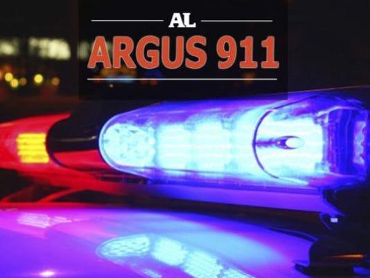 argus911lights