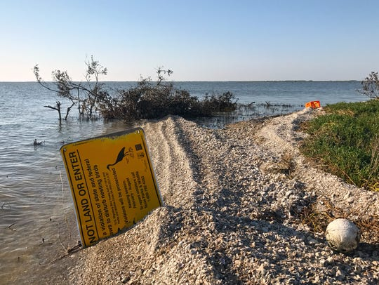 Many of the Coastal Bend's rookery islands were destroyed
