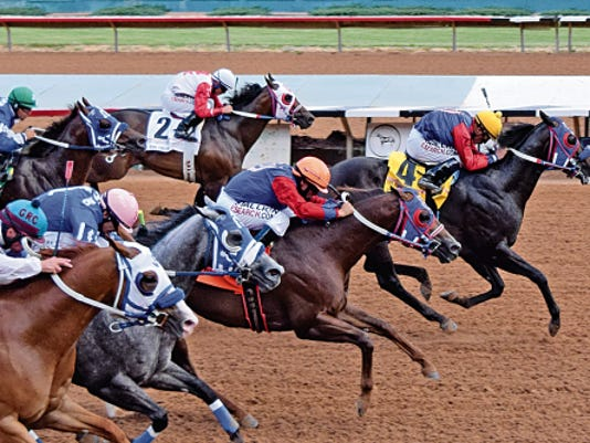 Don and Peggy Boyle's homebred Bf Farm Boss comes into the All American Derby trials off a neck win in the Grade 1, 815,045 Ruidoso Derby as the 5-2 favorite.