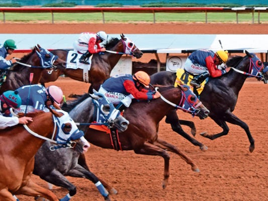 Bf Farm Boss scored the most important win of his career when he won the Grade 1, 815,045 Ruidoso Derby at Ruidoso Downs on Saturday afternoon.