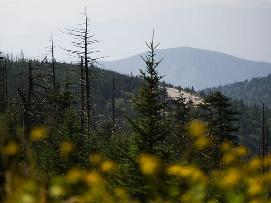 Clingman's Dome parking lot is viewable from the trail