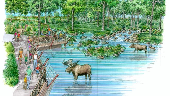 A state-of-the-art moose exhibit is underway at Potter Park Zoo. Pictured is the artist's rendering.