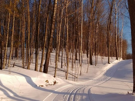 Lots of solo time on lovely ski trails was a highlight