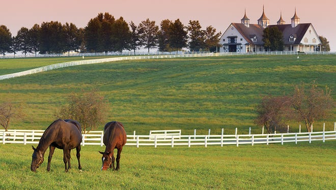 Find horses, barbecue, bourbon and more in the Bluegrass State of Kentucky.