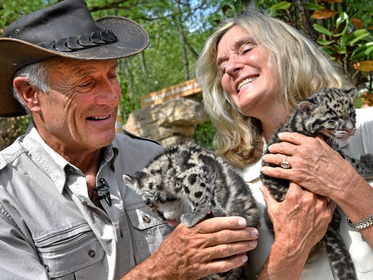 Jack Hanna sits with his wife of 50 years, Sue, as they enjoy spending time with clouded leopard cubs at the Nashville Zoo on Wednesday, May 2, 2018.
