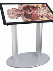 The Anatomage Table Alpha being used in anatomy classes