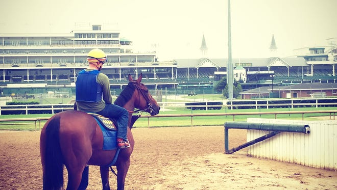 American Pharoah takes his morning stroll at Churchill Downs