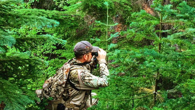 Dominic Aielle scouts for deer in the Oregon Coast Range.