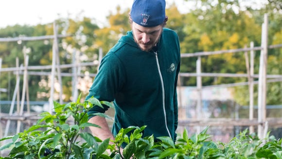 "Eli Facchinei, brewer at Tonewood Brewery in Oaklyn, takes a tour of a garden during the CFET ""Scrap Apps'' tasting at FireWorks Art Gallery in Camden around Camden in 2016. Facchinei is brewing another exclusive beer for the Sept. 29 #WasteNot event, using fruits from the CFET gardens."