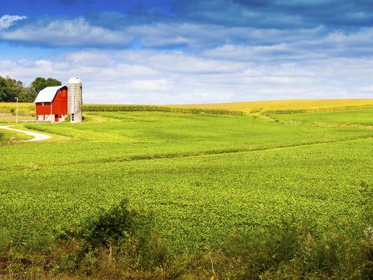 farm scene.jpg