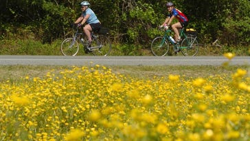 TRAILS: Favorite places to walk, bike and see nature