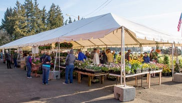 Plant sales pop up throughout the spring in Salem area