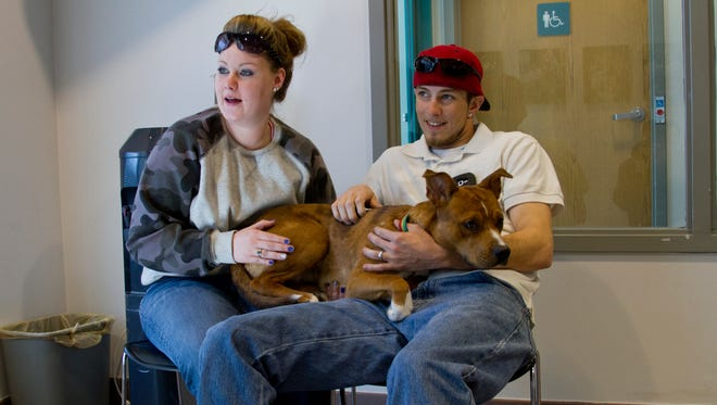 At a previous 9PetCheck, pet owners wait with their dog.