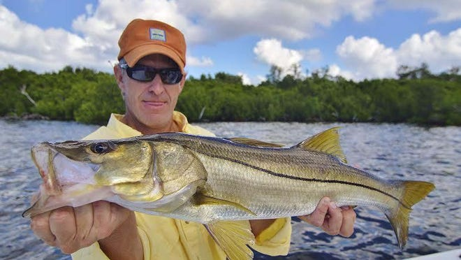 Tamp angler Winston Chapin's keeper snook was closely followed by a hookup with a tarpon that also hit a white Gulp! Jerk Shad under the mangroves, near Pineland in Pine Island Sound with Wildfly Charters Capt. Gregg McKee.