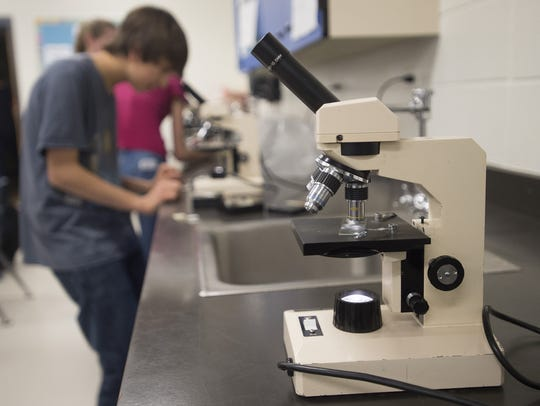Eighth graders use microscopes to train for Science