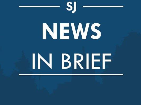 SAL BRF icon