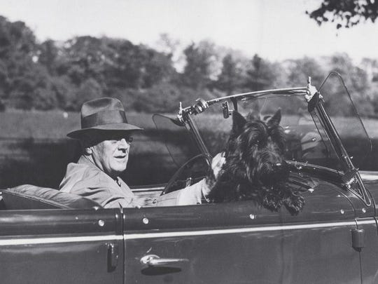 President Franklin D. Roosevelt drives around Hyde Park with his dog Fala.