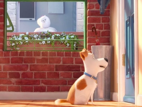 "Gidget watches from next door as Max waits for his owner to come home in ""The Secret Life of Pets."""