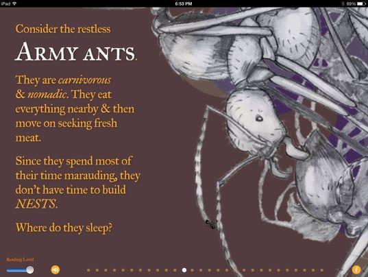 wonderful world of ants