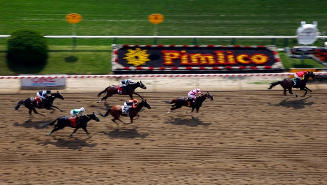Horses run on 2015's Preakness Stakes undercard.