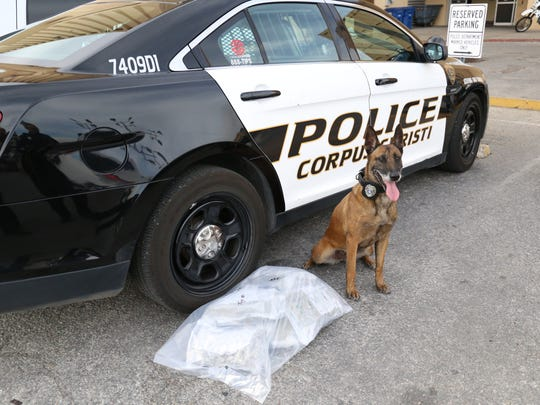 More than six pounds of marijuana was discovered by K9 enforcer Tanja during a traffic stop Wednesday, Jan. 25, 2017, in the 7800 block of Jim Wells Drive.