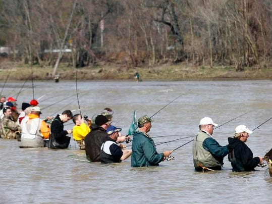 Walleye run signals spring has sprung in ohio for Maumee river fishing