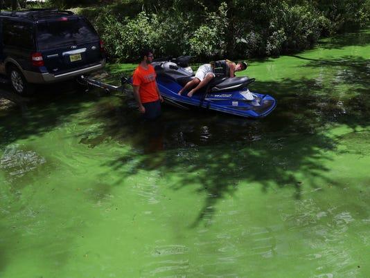 algae027.JPG