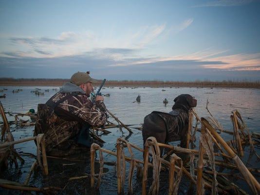 636129949701483692-Duck-Hunter.jpg