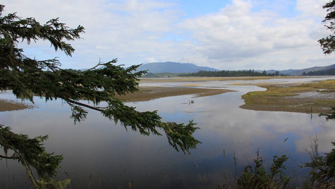 The Beltz Property, a 357-acre parcel of wetlands, dunes and beach north of Pacific City, will become Oregon's next state park. Seen here is its collection of estuaries teeming with wildlife.
