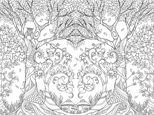 An Illustration From Johanna Basfords Coloring Book