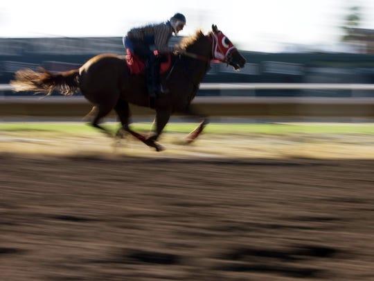 161051  biz-turf10/02/09   092909  JockeyÔs train the