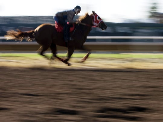 161051  biz-turf10/02/09   092909  JockeyÔs train the horses for the season opeing of Turf  Paradise (cq) in Phoenix(cq). Improvements they made at the Turf  Paradise (cq)that will help offset the drop in revenue exoerienced last year due to the recession. Photo by Nick Oza/ The Arizona Republic