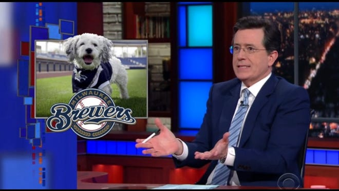 "Dog gone big time: Hank was a topic of discussion on Wednesday's ""Late Show."""
