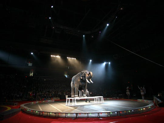 Scenes from the 2013 Shrine Circus at JQH Arena