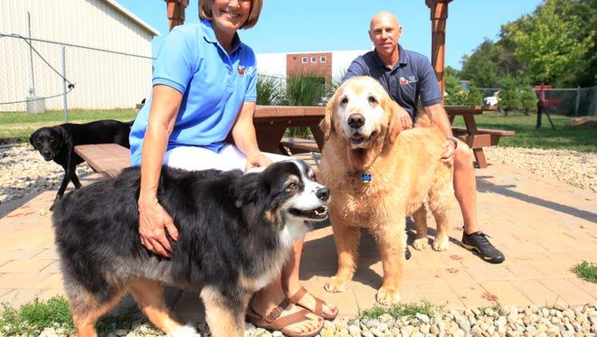 Dionne and Mike Roeder sit in the backyard play area with Pre and Charleigh, two of the dogs they take care of at Happy Clean and Smart, 5700 W. Kilgore Ave. The business offers daycare, self washing, training, grooming and boarding.