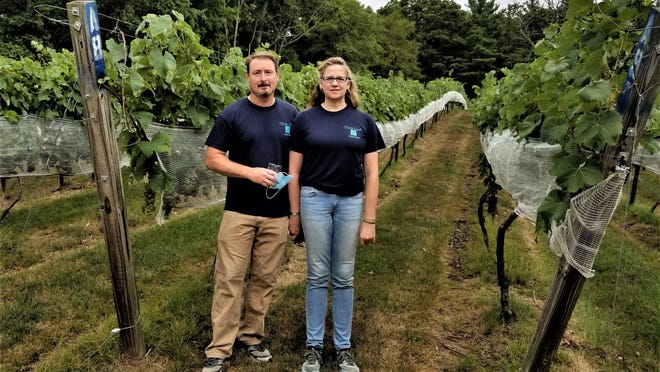 Steve and Sheri O'Connor have found ways to keep their Foster vineyard generating revenue during the coronavirus pandemic, and now they're offering customers distanced seating outdoors under tents and umbrellas.