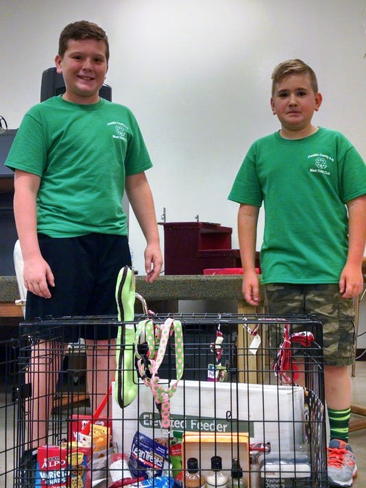 636168085307072416-4-H-Benefit-Auction-Dog-Crate.jpg