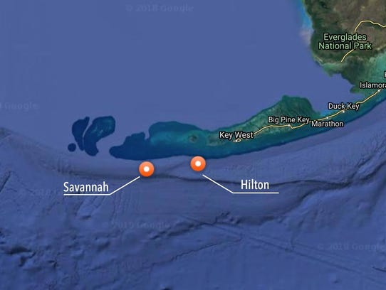 Great white sharks, Savannah and Hilton, pinged off