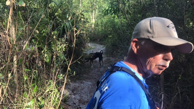 Jim Case, a handler for the Peace River K9 Search & Rescue Association, with his coonhound mix search dog, looks in a wooded area behind the community where Diana Alvarez disappeared a year ago in San Carlos Park.