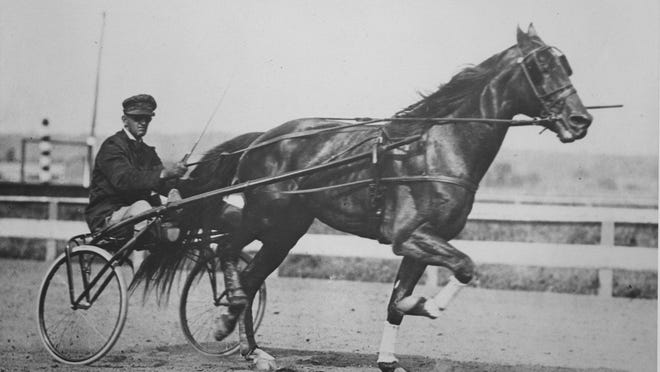 """Single G, """"the horse that time forgot,"""" was known for his speed and longevity in racing."""
