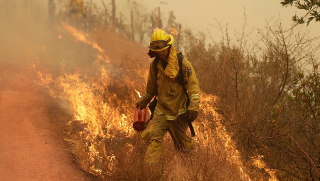 A firefighter walks in front of flames during a backburn operation Friday in Glen Ellen.