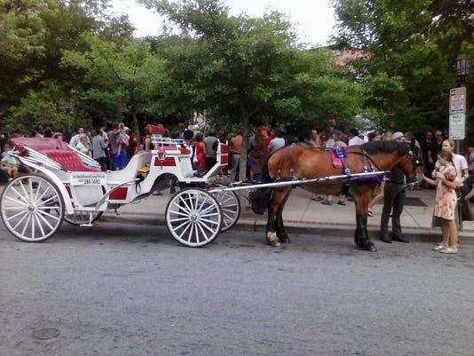 horse carraige 4