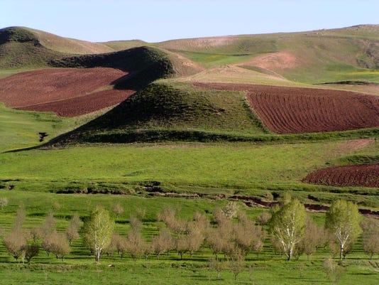 FIRST_sprachman Rolling Fields,Takhte Suleyman