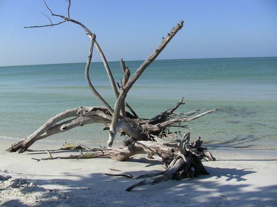 Cayo Costa State Park is a pristine, secluded island
