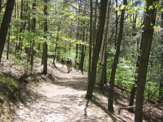 A leisurely walk in the woods can do wonders for a person's mental state.