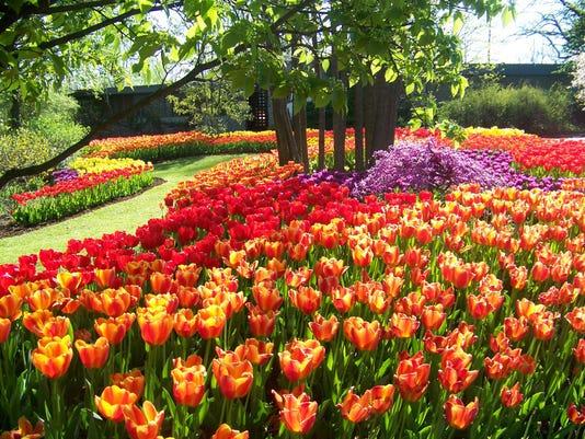 zoo blooms