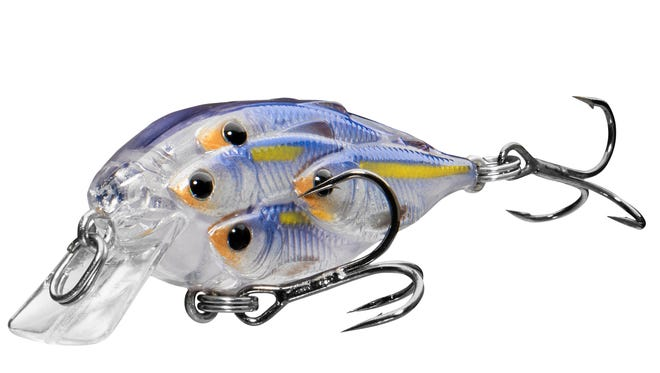 Few things look better to a bass than a school of shad.