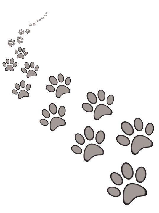 dog or cat paw print