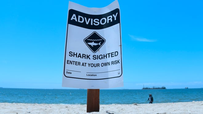 Warning signs for shark sightings remain in Long Beach, California, on May 16, 2017, where Great White sharks and their pups have been sighted regularly off southern California beaches.